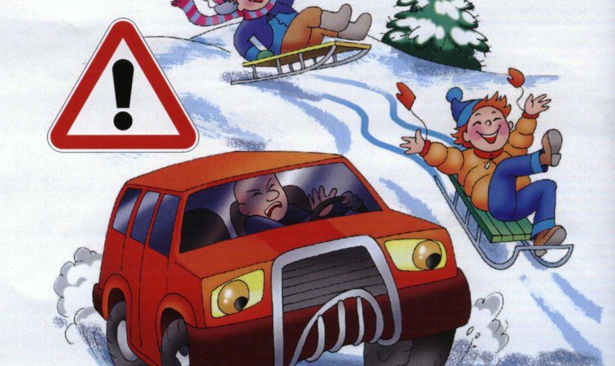 Профилактическое мероприятие «Безопасность на зимней дороге»