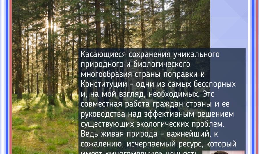 Сотрудники «Бузулукского бора» регулярно сталкиваются с проблемами не только природного характера, например, лесные пожары или вредители, но и антропогенного, то есть пагубного влияния человека