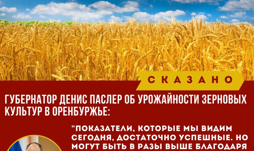 Один из крупнейших в России производителей семян зерновых и зернобобовых культур «Щёлково Агрохим» увеличивает представительство в Оренбуржье и примет на работу выпускников аграрного университета