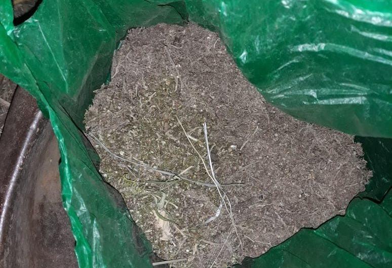 В Первомайском районе сотрудники полиции задержали подозреваемого в незаконном хранении марихуаны в крупных размерах