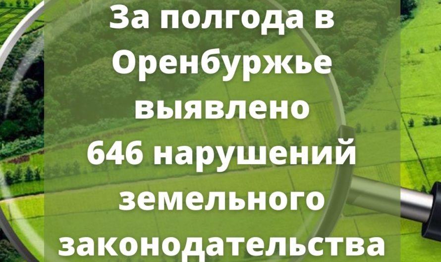 За полгода в Оренбургской области выявлено 646 нарушений земельного законодательства, нарушители заплатят почти 1,8 млн рублей штрафов